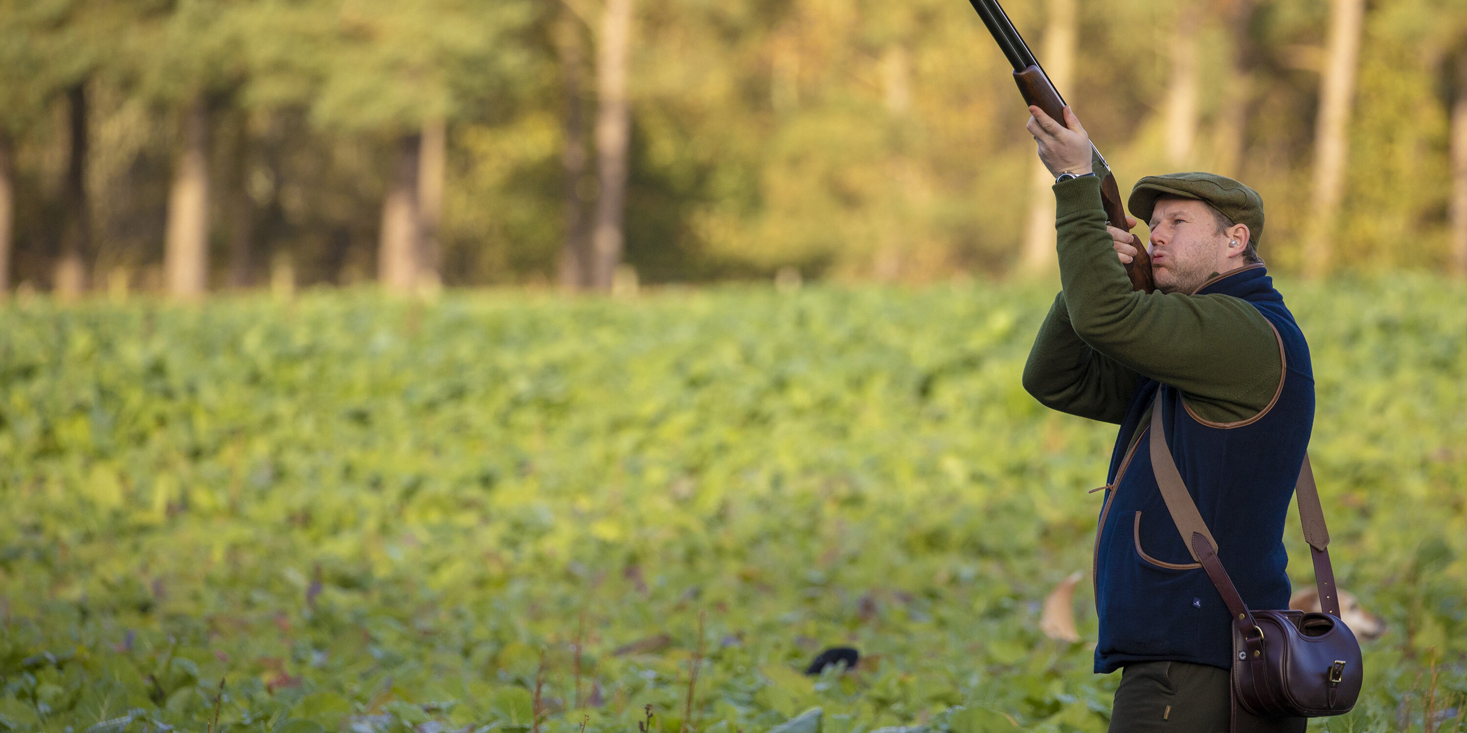 Partridge shoot Scottish Borders
